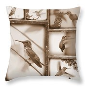 Sepia Hummingbird Collage Throw Pillow