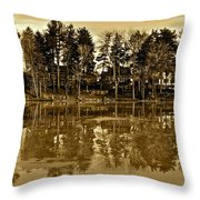 Sepia Reflection Throw Pillow