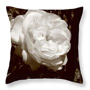 Sepia Rose Throw Pillow