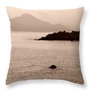 Sepia Seascape Throw Pillow