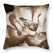 Sepia Tones Throw Pillow