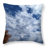 September Afternoon Throw Pillow