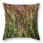 September Grasses By Jrr Throw Pillow