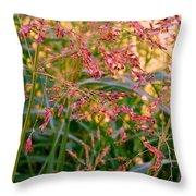 September Grasses Throw Pillow