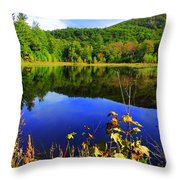 September Reflections Throw Pillow