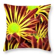 September's Radiance In A Flower Throw Pillow