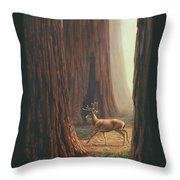 Sequoia Blacktail Deer Phone Case Throw Pillow by Crista Forest