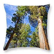 Sequoias Reaching To The Clouds In Mariposa Grove In Yosemite National Park-california Throw Pillow
