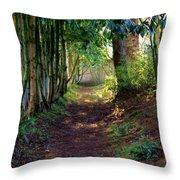 Serene Garden Path Throw Pillow