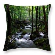 Serene Greenbrier Area Stream  Throw Pillow