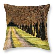 Serene Lane Throw Pillow