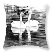Serene Setting Throw Pillow