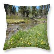 Serene Stream Throw Pillow