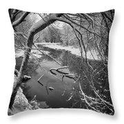 Serene Winter Stream Throw Pillow