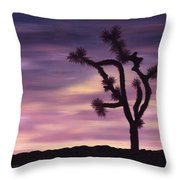 Serenity And Strength Throw Pillow