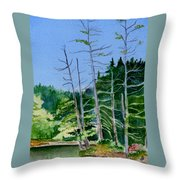 Serenity On The Lake Throw Pillow