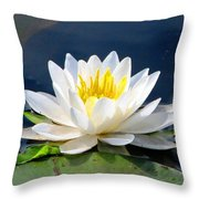 Serenity On The Lily Pond Throw Pillow