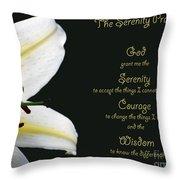 Serenity Prayer 3 Throw Pillow