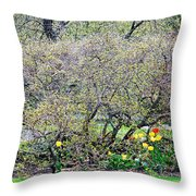 Serenity View Throw Pillow