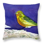 Serinus  Canaria  Aka The Canary Throw Pillow