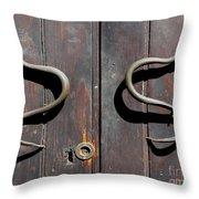Serpent Throw Pillow