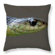 Serpent Profile Throw Pillow
