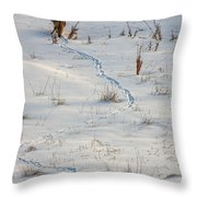 Serpentine Searcher Throw Pillow