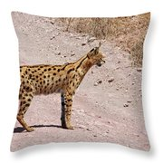 Serval Cat Throw Pillow
