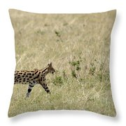 Serval Hunting Throw Pillow