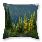 Set Down Your Coffee And Follow Me - 140702a-098 Throw Pillow