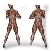 Set Of Six Men Showing Progression Throw Pillow