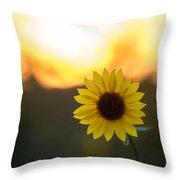 Setting Sun Flower Throw Pillow