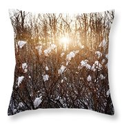 Setting Sun In Winter Forest Throw Pillow