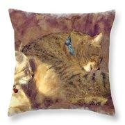 Settling Down Throw Pillow by Susan Leggett