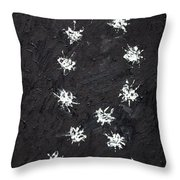 Seventeen Flies Flying - Oil Painting Throw Pillow