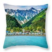Seward Throw Pillow