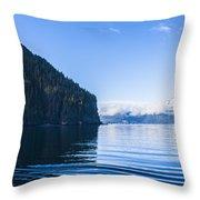 Sunny Cove 2 Throw Pillow