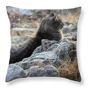 Sexy Cat Throw Pillow