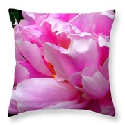 Shabby Peony Throw Pillow