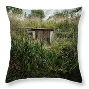 Shack In The Park Throw Pillow