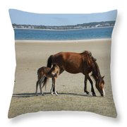 Shackleford Banks Foal Throw Pillow