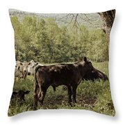 Shade Seekers Throw Pillow