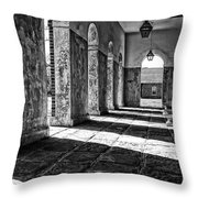 Shaded Throw Pillow