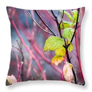 Shades Of Autumn - Reds And Greens Throw Pillow