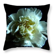 Shades Of Black Throw Pillow