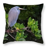 Shades Of Blue And Green Throw Pillow