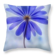 Shades Of Blue II Throw Pillow
