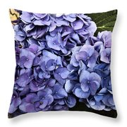 Shades Of Blue Throw Pillow by Tanya Jacobson-Smith
