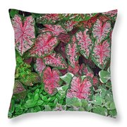 Shades Of Pink And Green And A Hint Of Purple Throw Pillow