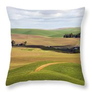 Shadow Division Throw Pillow